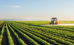 Waiver of GST on agriculture input: Kissan Ittehad proposal turned down by government