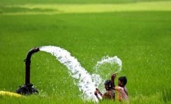Punjab government decides to pay Rs 6 billion sales tax on agriculture tube-wells