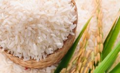 ADB recommends cess fund to prop up rice exports