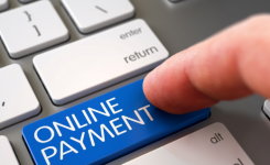 Customs to launch e-payment module by next week