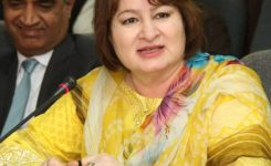FBR to launch e-payment system soon to facilitate taxpayers: Member IT Nausheen Javaid Amjad